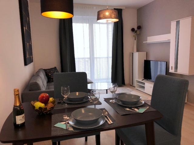 Apartment Wohnzimmer für Ihre Zahnbehandlung in Ungarn
